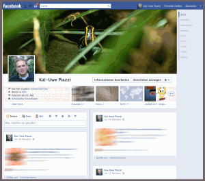 Facebooks Timeline Screenshot