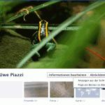 Facebook: Wie sehen andere meine Timeline/Chronik